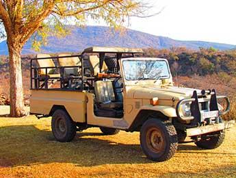 safari-382383_640-Copy