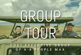 Group Tour