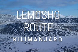 Lemosho Route (6-8 Days)