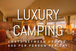 Luxury Camping(400$-600$)