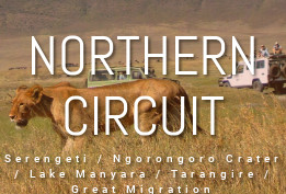 Northern Circuit
