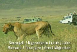 NothernCircuit Tanzania