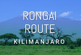 Rongai Route (6-7 Days)