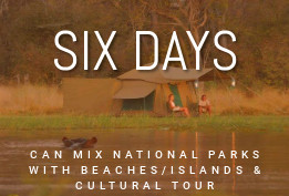 6 Days Safari