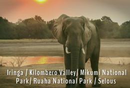 Southern Circuit - Tanzania